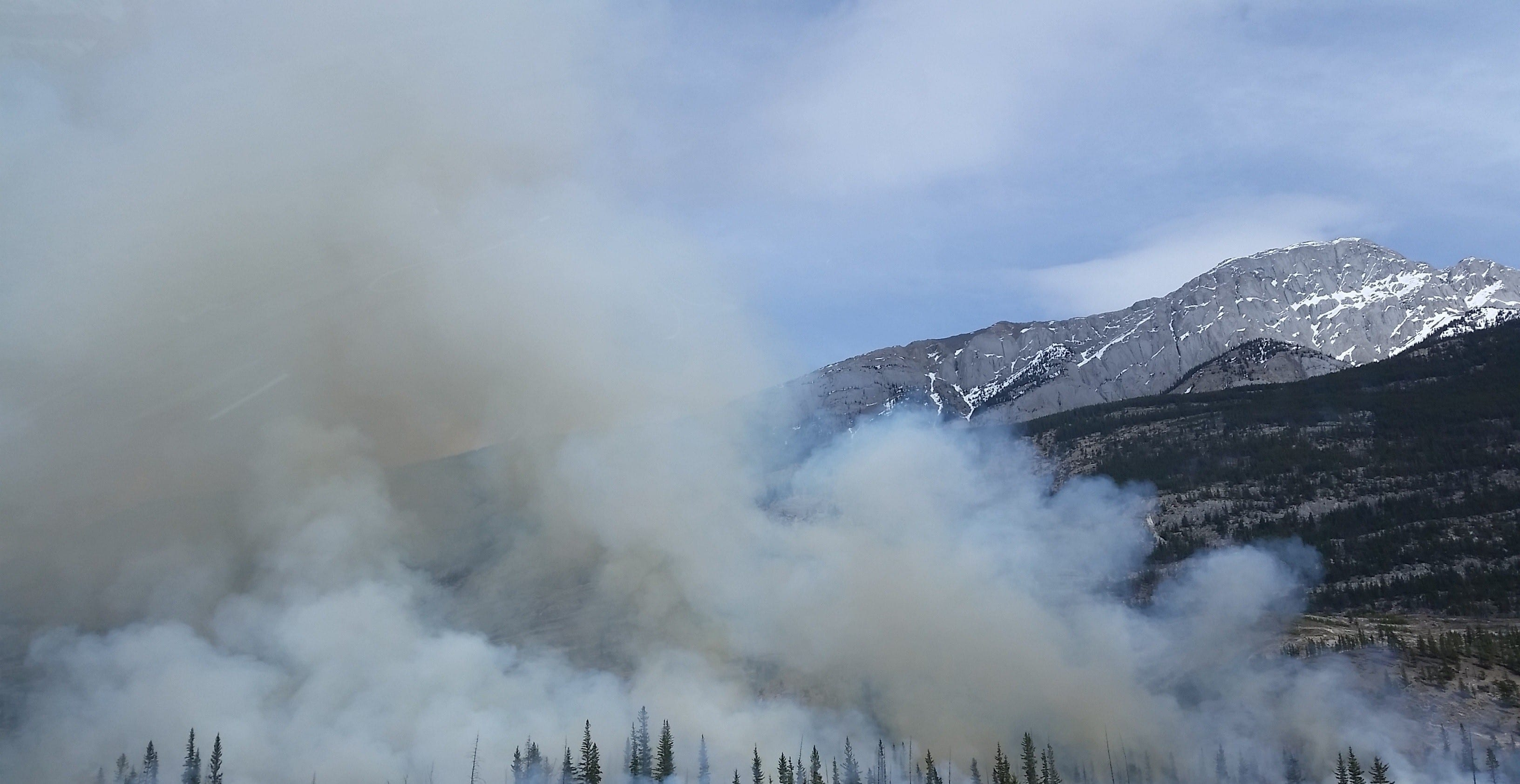 Smoke rises above a forest.